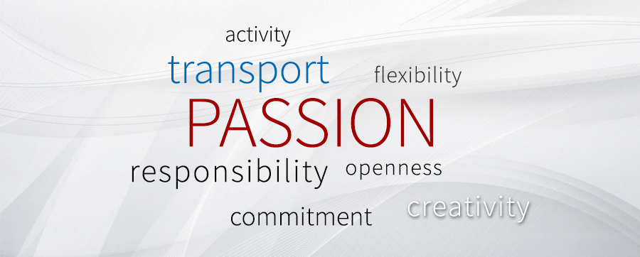 openness, activity, responsibility, TRANSPORT, passion, creativity, flexibility, commitment.